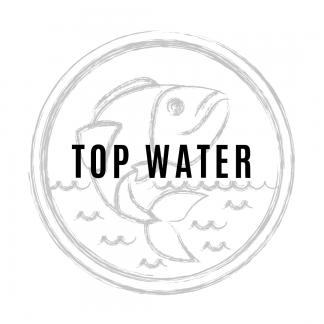 Topwater